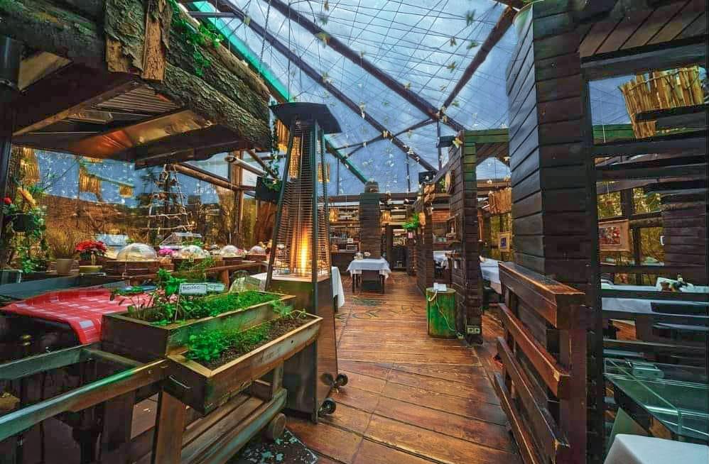 Restaurant Forest