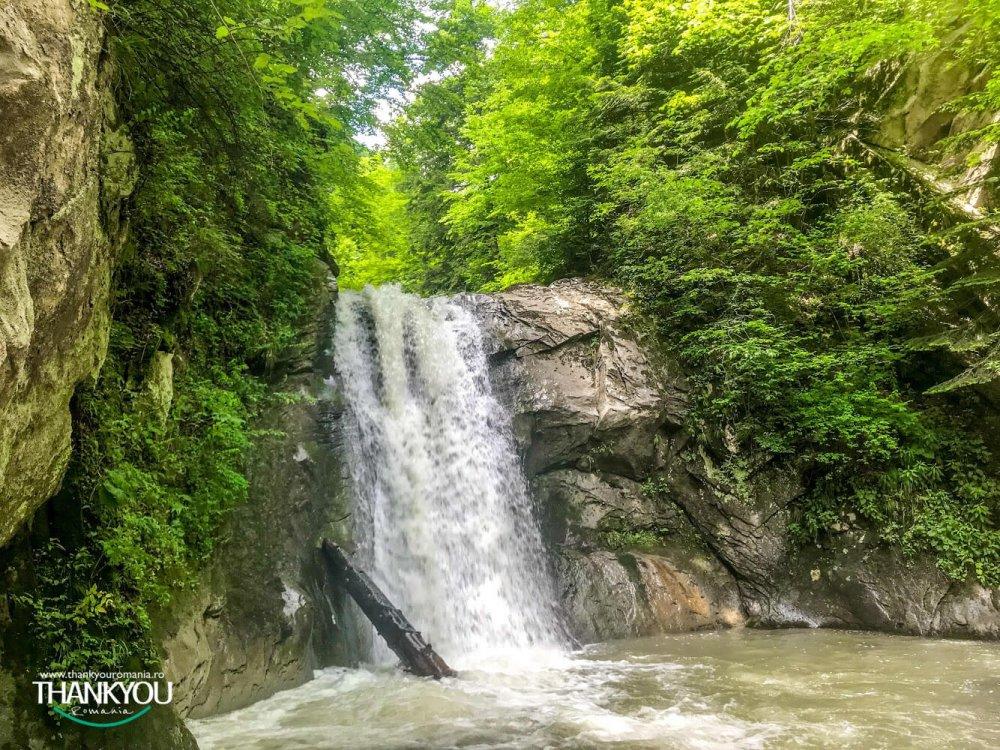 cascada-pruncea