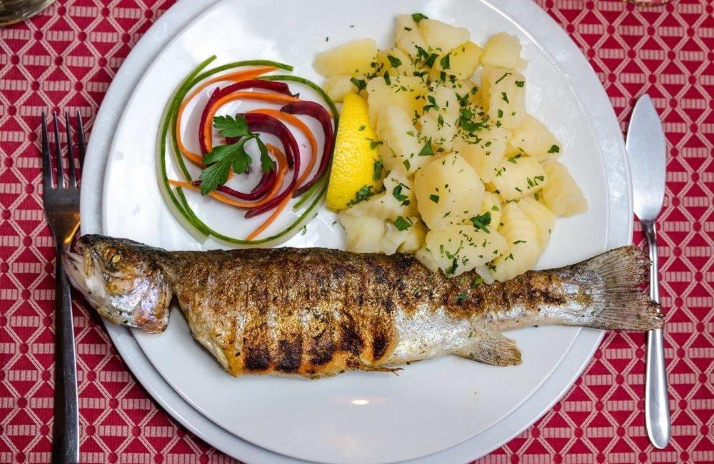 fish-4-life-harman