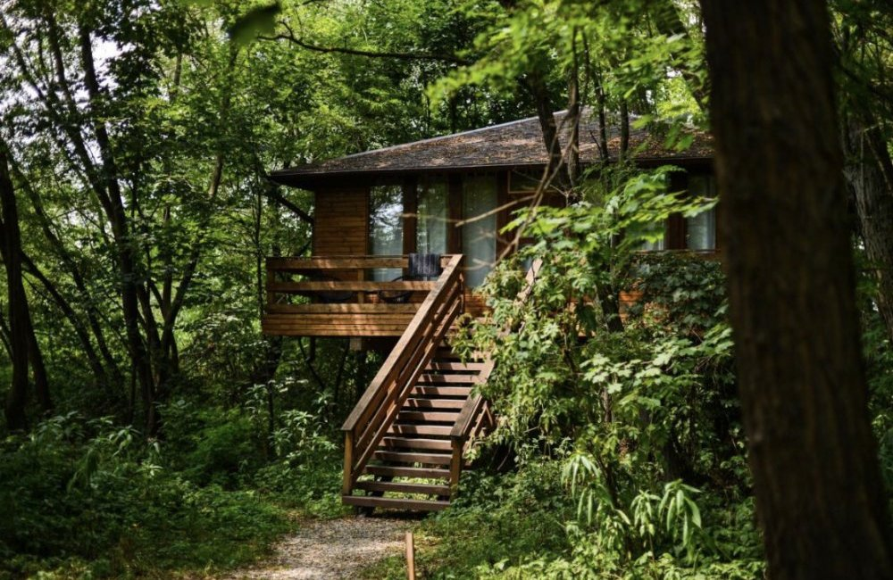 porumbacu-treehouse